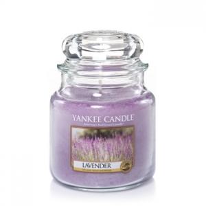 Lavender Classic - Medium