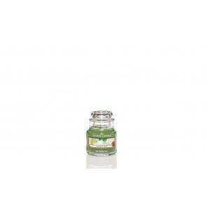 Vanilla Lime Classic- Small