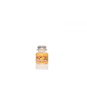 Mango Peach Salsa Classic - Small