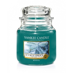 Icy Blue Spruce Classic - Medium
