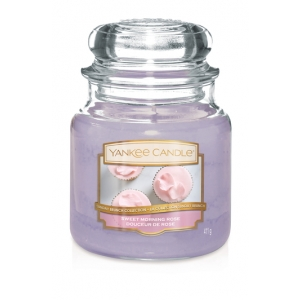 Sweet Morning Rose Classic - Medium