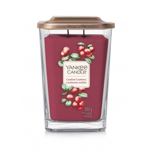 Candied Cranberry Elevation - Large