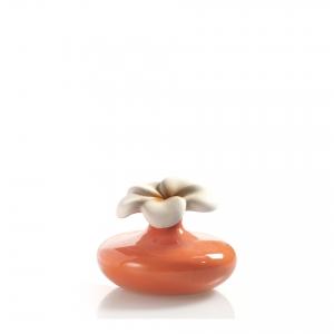 Oranž lill - difuuseri anum