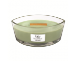 Fig Leaf & Tuberose - Medium