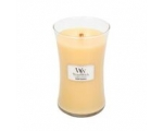 Sun-Drenched Apricot Rose Classic - Medium