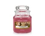 Pomegranate Gin Fizz Classic - Medium